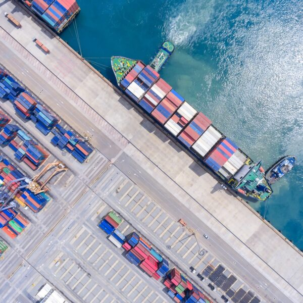 Professional Import and Export Services in The Bahamas
